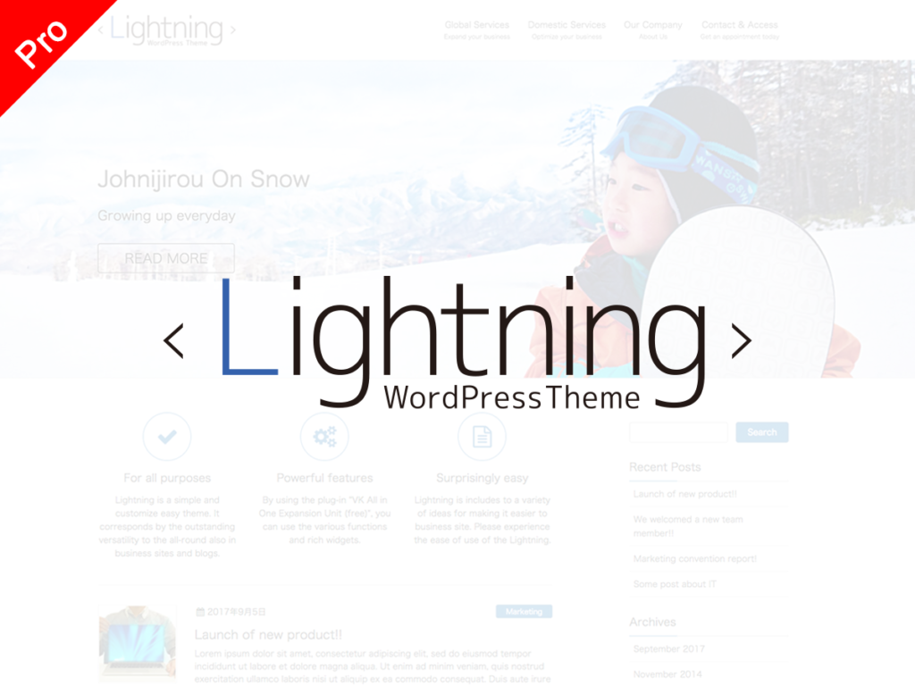 Lightning Pro | Vektor WordPress Solutions